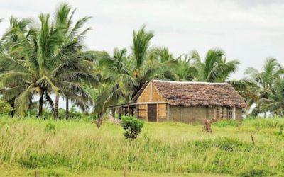Appui à sept chaînes de valeurs agricoles pour le CASEF – Madagascar
