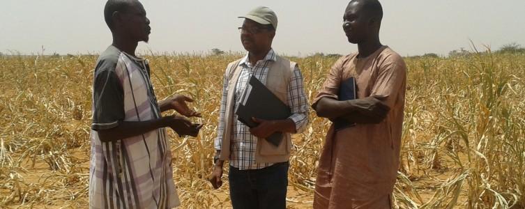 Médiation sociale pour Essakane – Burkina Faso