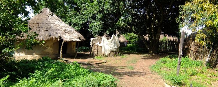Mise en œuvre du PAR de AMC – Guinée
