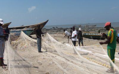 Mise à jour de l'EIES de Bel Air Mining – Guinée