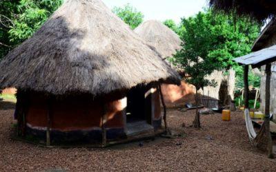 Mise à jour des inventaires pour la CBG – Guinée
