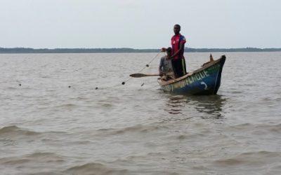 EIES pour le projet Chalco – Guinée