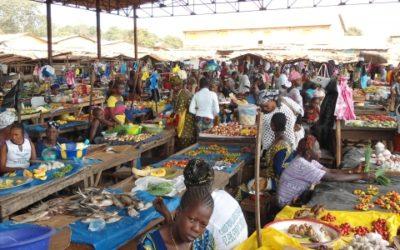 Market Survey for Simfer SA – Guinea