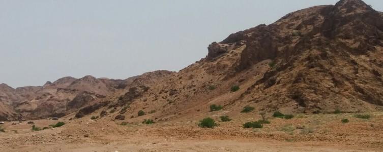 EIES pour ERM – Djibouti
