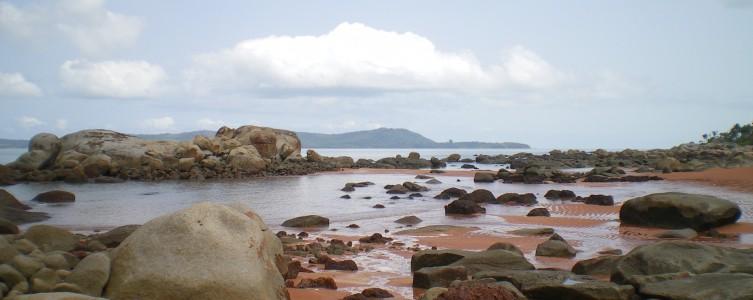 Etude socio-économique de base – Guinée