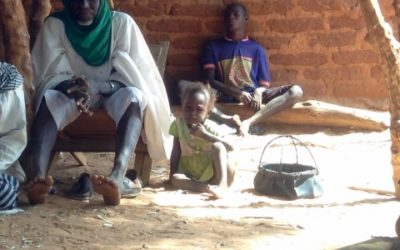 Plan de développement local du projet Karma – Burkina Faso