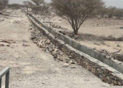 Etude de base et suivi technique pour la FAO – Djibouti