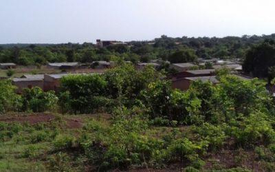 Audit d'un PAR et d'une EIES – Mali