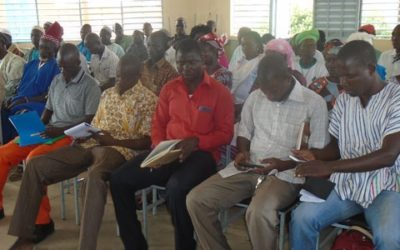 Integrated Municipal Development Projects for the Forest Investment Program – Burkina Faso