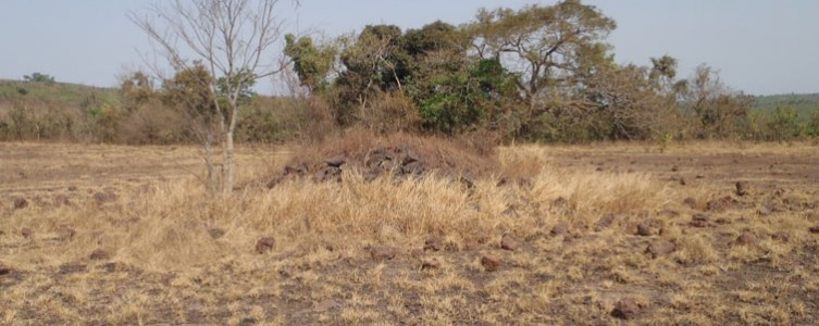 Social baseline survey for a protected area project – Guinea