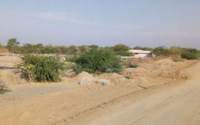 Etude d'Impact Environnemental et Social pour un projet agro-photovoltaïque – Djibouti