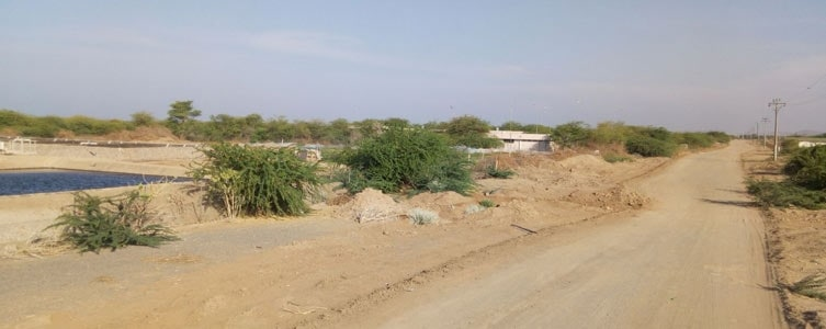 Environmental and Social Impact Assessment for an agro-photovoltaic project – Djibouti