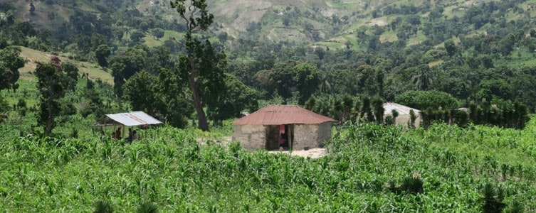 Study on the relationship between land tenure and land use – Haiti