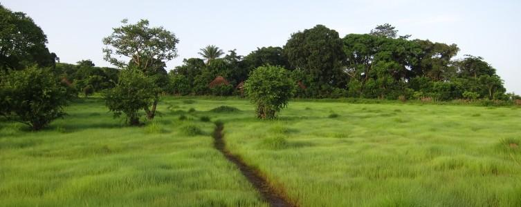 Cadre de Politique de Réinstallation pour la CBG – Guinée
