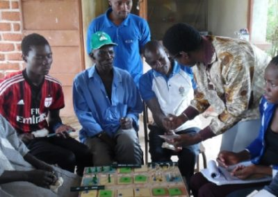Diagnosis and REDD+ land-use planning for the FIP – Burkina Faso