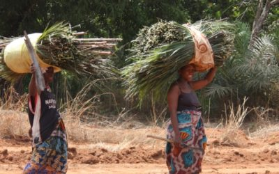 Supervision of the LUPS for LuxDev – Niger