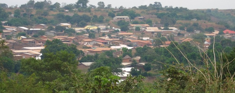 Land tenure study for the MVAT – Guinea