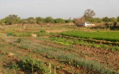 Répertoire des aménagements hydro-agricoles – Burkina Faso