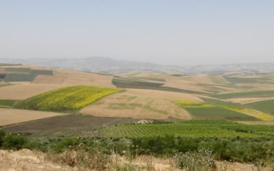 Rapport de Cadrage pour MCC – Maroc
