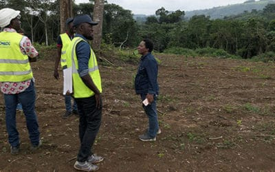 Inventaires et développement de Sycosur pour Comilog – Gabon