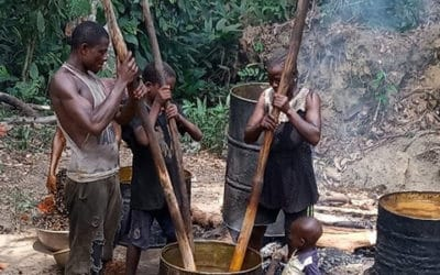 Etude d'Impact Social pour Tractebel – Guinée