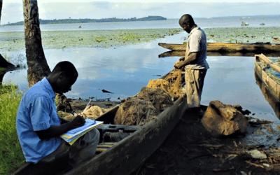 Impact study of the Atinkou thermal power plant – Ivory Coast