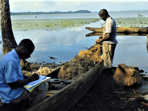Impact study of the Atinkou thermal power plant – Ivory Coast