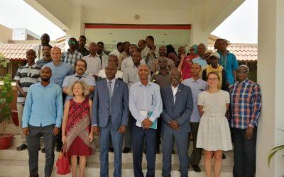 Insuco et la FAO Djibouti ont co-organisé un atelier de restitution d'une étude menée sur le secteur agricole djiboutien