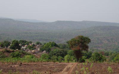 Etude sur les enclaves des ZIP du PNMB pour la WCF – Guinée