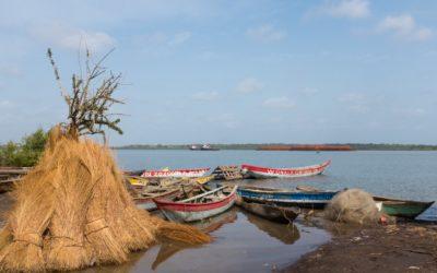 EES des infrastructures sur la zone côtière guinéenne pour PRCM/BGEEE – Guinée