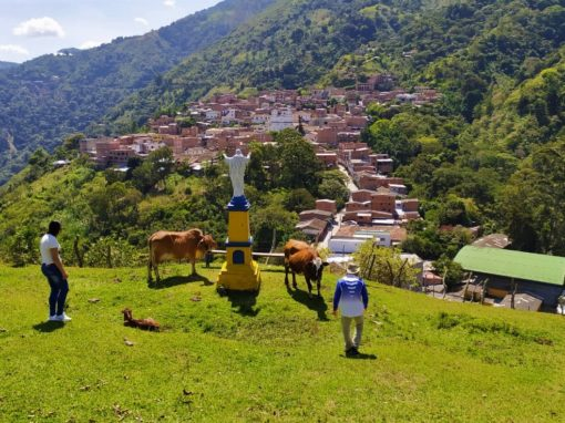 Programa Higabra Emprende para Continental Gold – Colombia