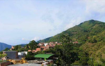 Etude de faisabilité pour Continental Gold – Colombie