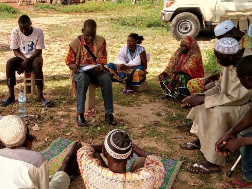 MIAS de las plantas de energía solar de Zano y Souri para ERM – Burkina Faso