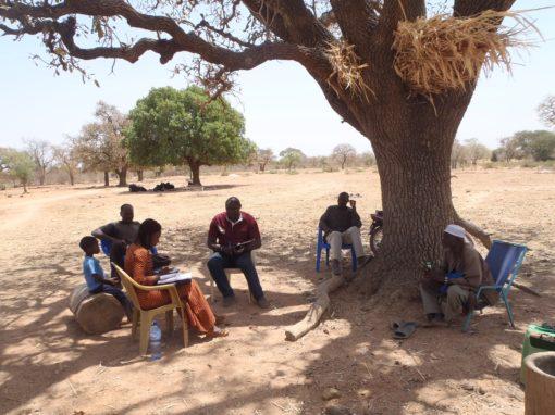 Diagnóstico de la tierra para Cajou Espoir – Togo
