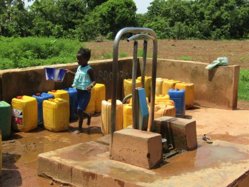 Diagnostic et dispositif participatif de la gestion de l'eau pour UDUMA – Burkina Faso