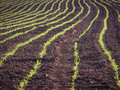 Evaluación de la vocación y uso del suelo – Perú