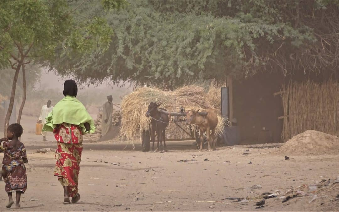 Resilac Project – Chad, Cameroon, Niger, Nigeria