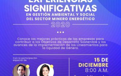 Experiencias Significativas 2020 – Categoría Género