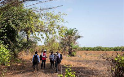 Mise à jour du PAR du projet minier de Dynamic Mining – Guinée